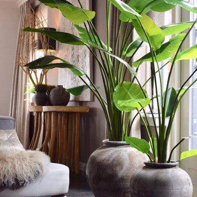 Kunstplant Strelizia groen